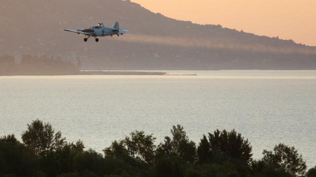 Befejeződött a Balaton környékén a szúnyoggyérítési program