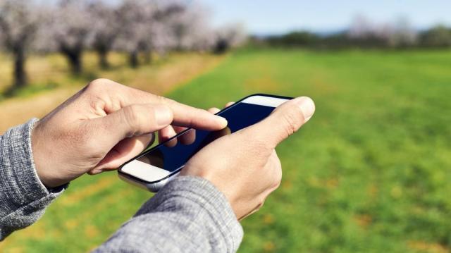 Okostelefonos alkalmazáson is ellenőrizhetők az őstermelők jogosultságai
