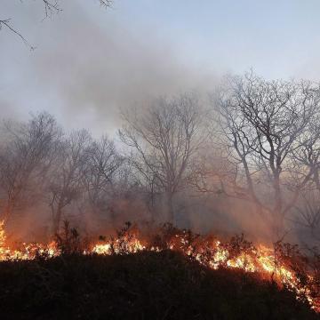 Ősszel is fenyegetnek az erdőtüzek