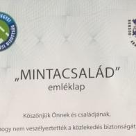 """500 Borsod megyei """"MintaCsalád"""" – Mindenki nyer!"""