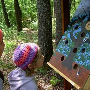 Az aggteleki Kincskereső játékösvény lett a legjobb tanösvény Az év ökoturisztikai létesítménye versenyben