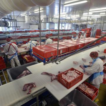 Kedvezően hatott az év eleji áfacsökkentés a sertéságazatra