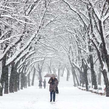 Szélre és hófúvásra figyelmeztet a meteorológiai szolgálat