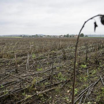 Több mint ötven önkormányzat vet ki földadót