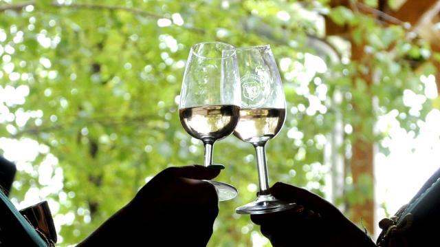 Stratégia készül a somogyi bor presztízsének növelésére