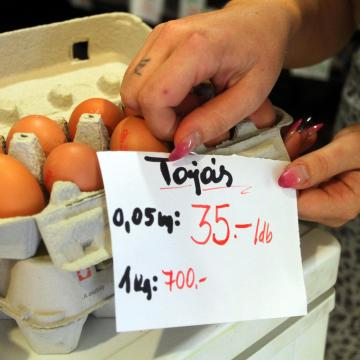 Mától könnyebb összehasonlítani a tojás árát