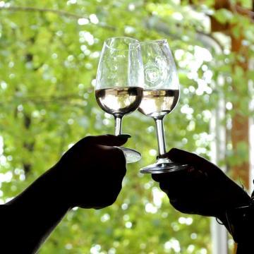 A helyi borok népszerűsítését kérik a polgármesterektől Somogyban