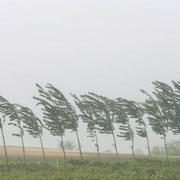 Erős szél és sok eső - Több megyére másodfokú figyelmeztetést adtak ki