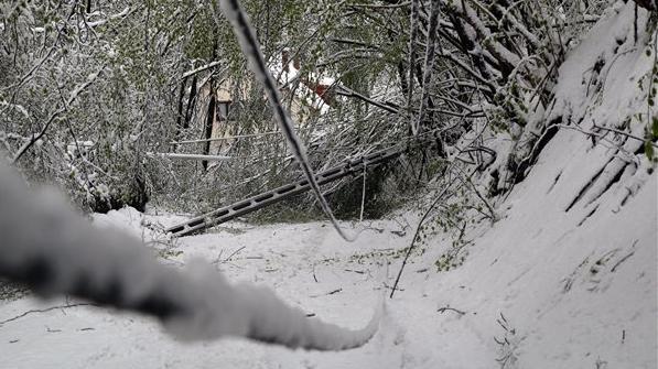 Félmilliárdos kárt okozott az áprilisi télies időjárás