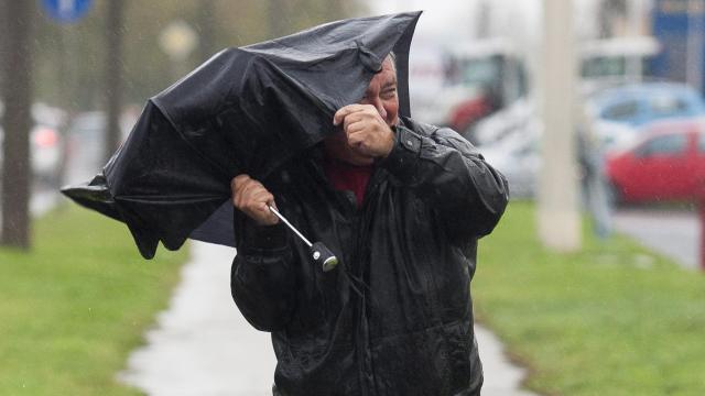 Több helyen másodfokú riasztást adtak ki a szél miatt
