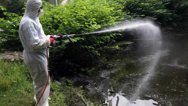 Országszerte folytatódik a szúnyogirtás