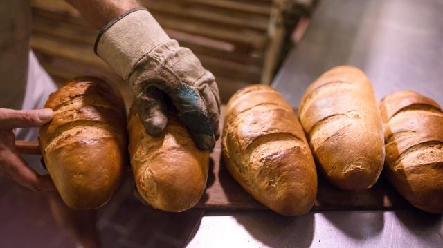 Nem drágulnak a kenyerek az összetétel változása miatt