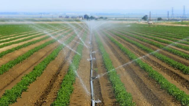 Nem kell fizetniük a gazdálkodóknak a vízkészlet-járulékot