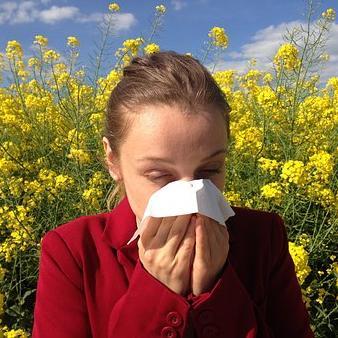 Kezdődik az allergiások nehéz időszaka