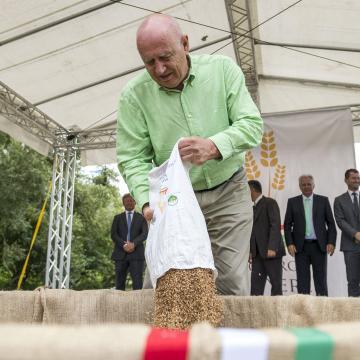 Magyarok kenyere - Összeöntötték a magyarországi és a határon túlról származó búzát