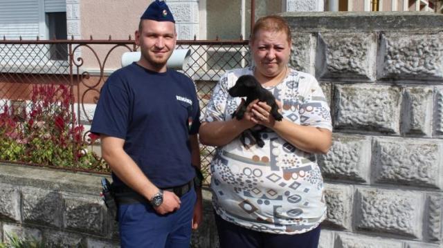 Halálra ítéltek kiskutyákat mentettek meg