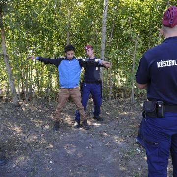 Határsértőket fogtak Lőkösháza közelében