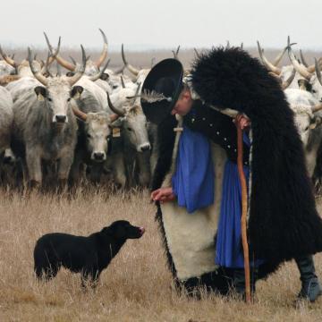 Kúria: nem sértett jogszabályt a Hortobágyi Nemzeti Park