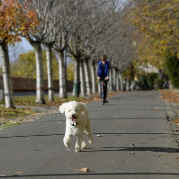 Az utolsó szeptemberi héten is több helyen lehet még 20 fok körüli meleg