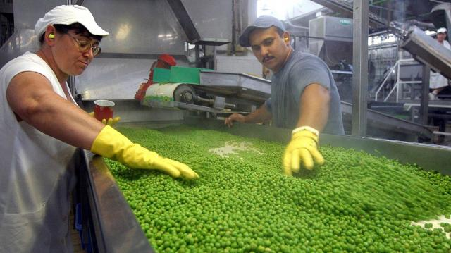 Jó évet zárhat idén a békéscsabai Bonduelle gyár