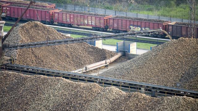 A kaposvári marad az egyetlen cukorgyár