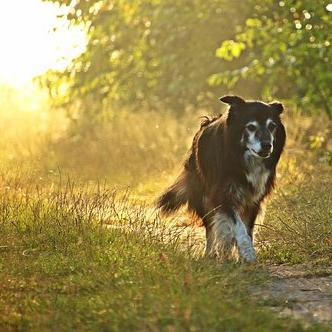 Érdemes lesz a szabadban élvezni az őszi napsütést