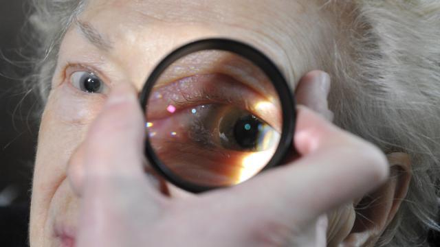 Ingyenes látásellenőrzéssel várnak mindenkit az optikák. Idén is megrendezik  a