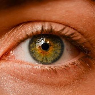 Jó szemmel tartani: ebben a hónapban ingyenes a látásvizsgálat