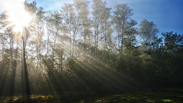Újra sok napsütés várható a héten