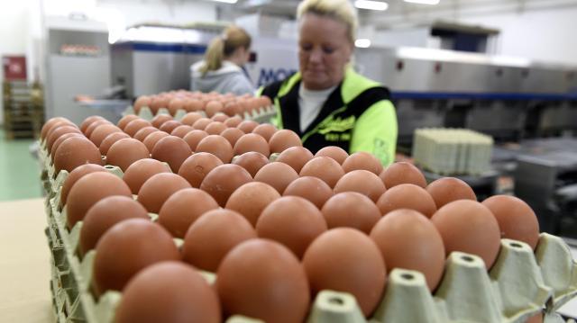 50-60 forintra is emelkedhet a tojás ára