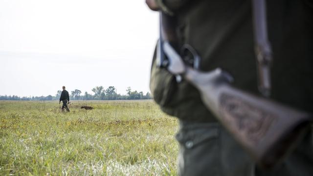 A nemzeti parké lesz a vadászati jog 24 ezer hektáron