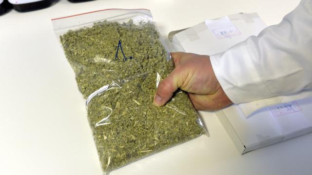 Mennyi drogot kell csempészni 8,5 év fegyházért?