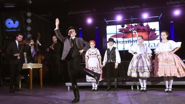 Újabb vidékek tehetségei a Fölszállott a páva  harmadik élő elődöntőjében