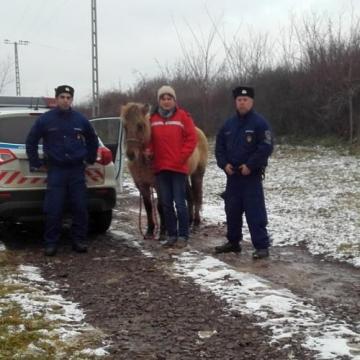 El akarta tüntetni a lopott lovat