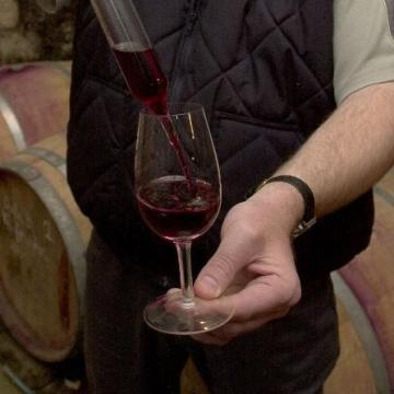 Három termelőt is jelöltek a Balatoni Borrégióból az Év bortermelője címre