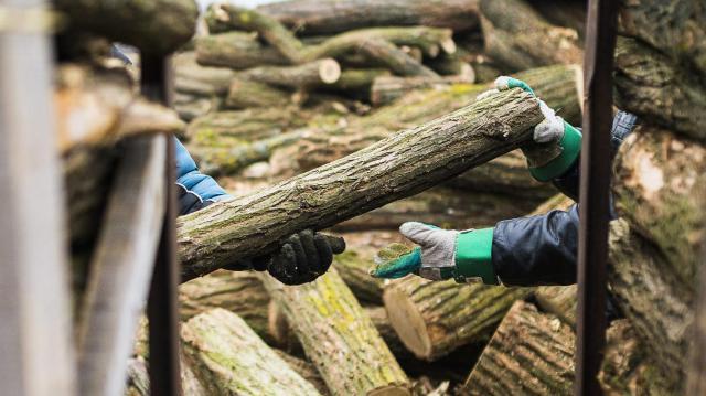 Több településen is átverték a vevőket a tűzifacsalók