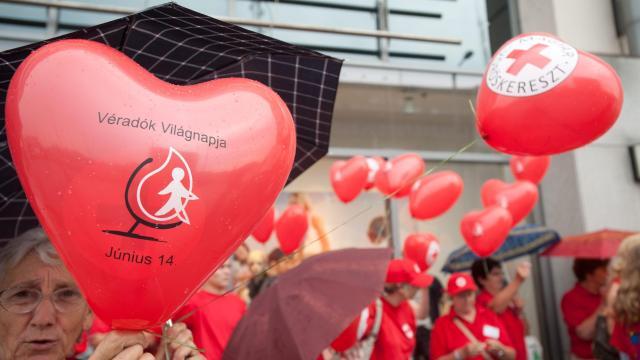 Nyelvet tanít és jogosítványt ad a fiataloknak a Vöröskereszt