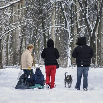Akár 10 fok körüli meleg is lehet az utolsó januári hétvégén