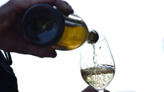 Olaszrizling Szerintünk – Kóstolón térségünk borai is