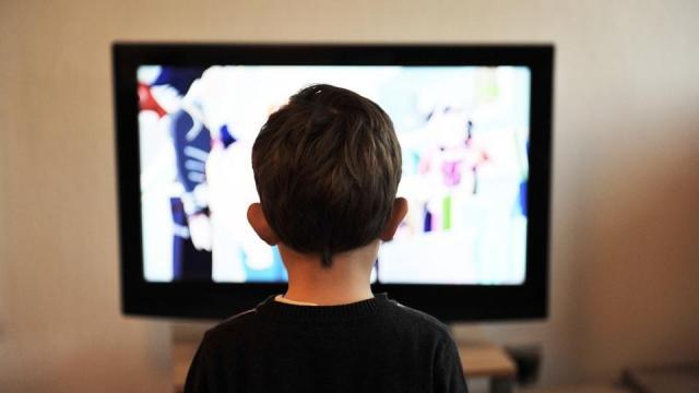 A Dal 2018, Gasztroangyal és a Férfiak, akiket nem szeretnek a közmédia hétvégi műsorán