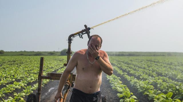Ötszörösére növelnék a gazdák az öntözhető terület nagyságát