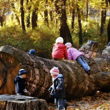 Megkezdődött a Zöldváros fejlesztési program Szegeden