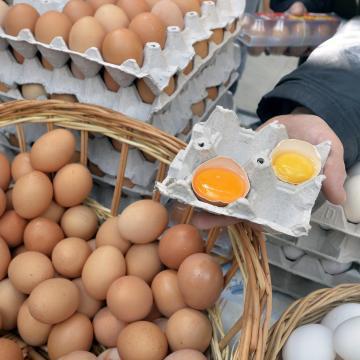 223 tojást eszünk évente, ami húsvétra olcsóbb lett