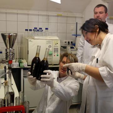 Szerencsen készül el Magyarország eredetmintázati bortérképe