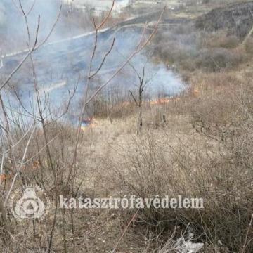 Több avartűzhöz is riasztották a tűzoltókat