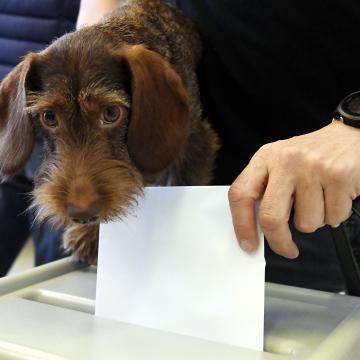 A választok mintegy 30 százaléka voksolt 11 óráig – Megyei adatok!