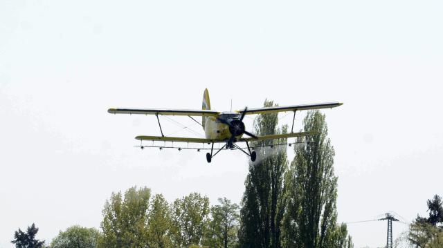 Április közepén kezdődik a balatoni szúnyogirtás