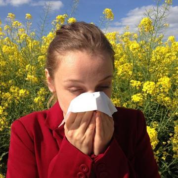 Egyes növények pollenkoncentrációja már elérheti a magas szintet