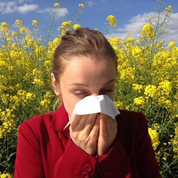 Berobbant az allergia szezon