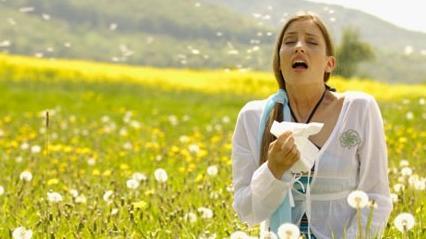 Már nagyon magas egyes növények pollenkoncentrációja